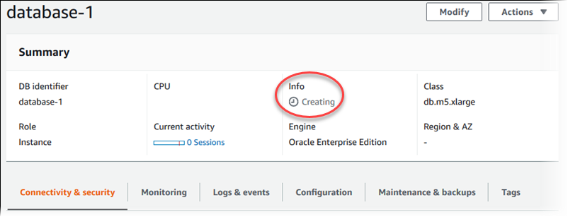 Creating an Oracle DB Instance and Connecting to a Database on an ...