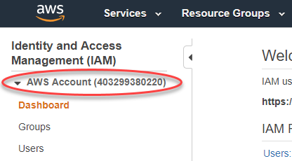 Your AWS Account ID and Its Alias - AWS Identity and Access