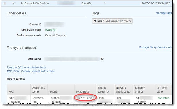 Mounting with an IP Address - Amazon Elastic File System