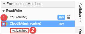 Abrir el archivo de un miembro del equipo en el IDE de AWS Cloud9