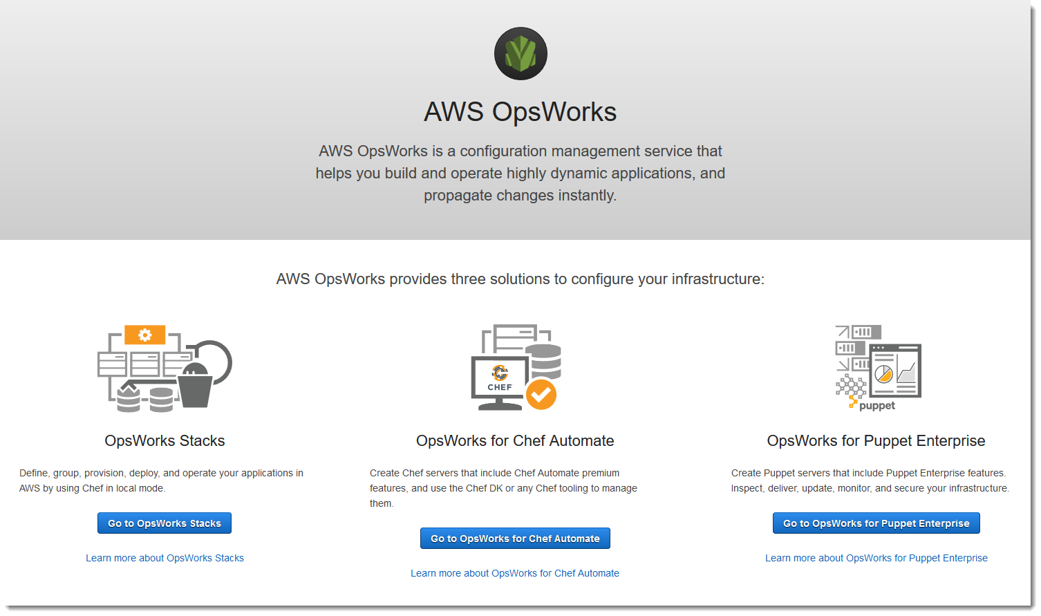 Create a Puppet Enterprise Master - AWS OpsWorks